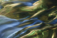 flowing water reflected