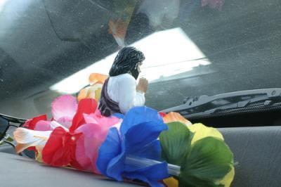 windshield flowers