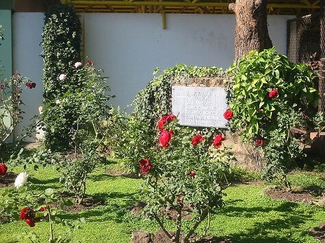 UCA Jesuit memorial rose garden