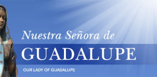 Our Lady of Guadalupe header from Loyola Press