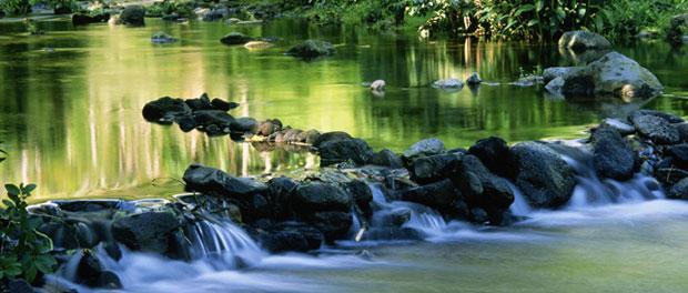 stream - river