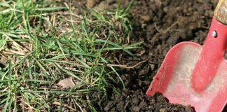 summer garden digging