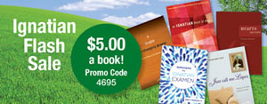 Ignatian books flash sale