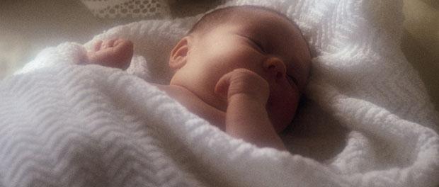 baby - not Kerry's