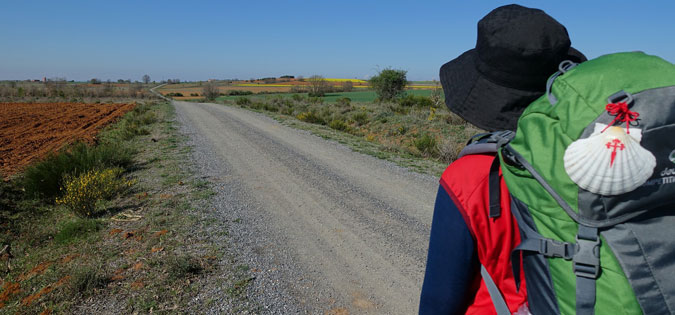 pilgrim on the Camino de Santiago