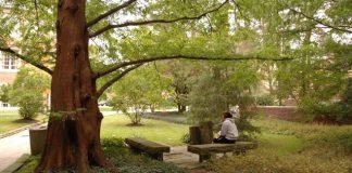 James Davis Garden at John Carroll University [provided by JCU for Picturing God]