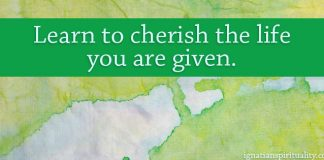 Learn to cherish the life you are given. - quote on green-blue background