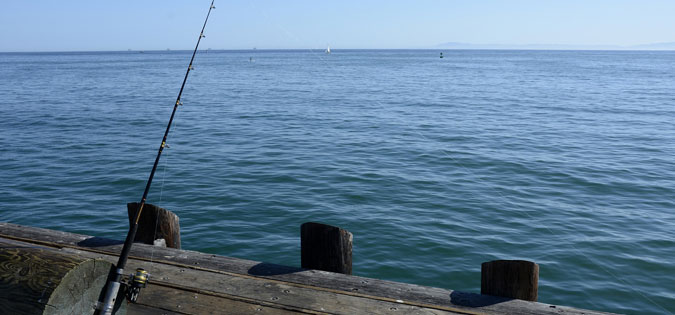 patience - fishing