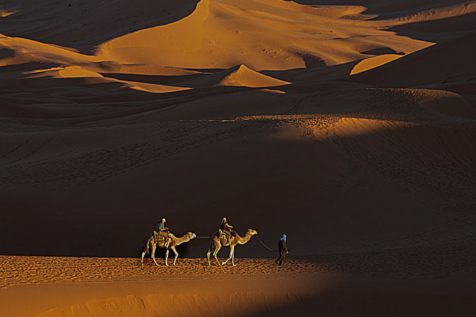 Morocco - camels - photo provided by Vinita Wright