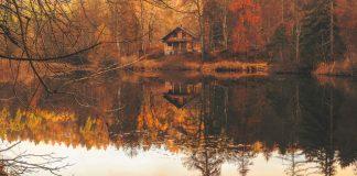 autumn retreat cabin