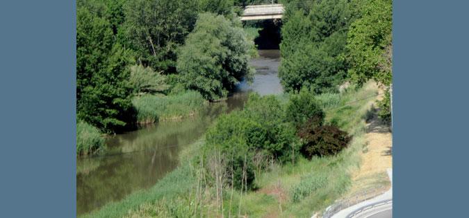 River Cardoner