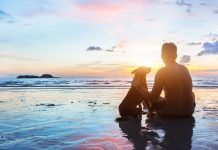 man and dog on beach in reflective scene
