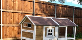 chicken coop - image courtesy of Gretchen Crowder