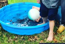 kiddie pool - image courtesy of Gretchen Crowder