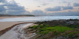 Australian beach - image courtesy of www.fionabasile.com