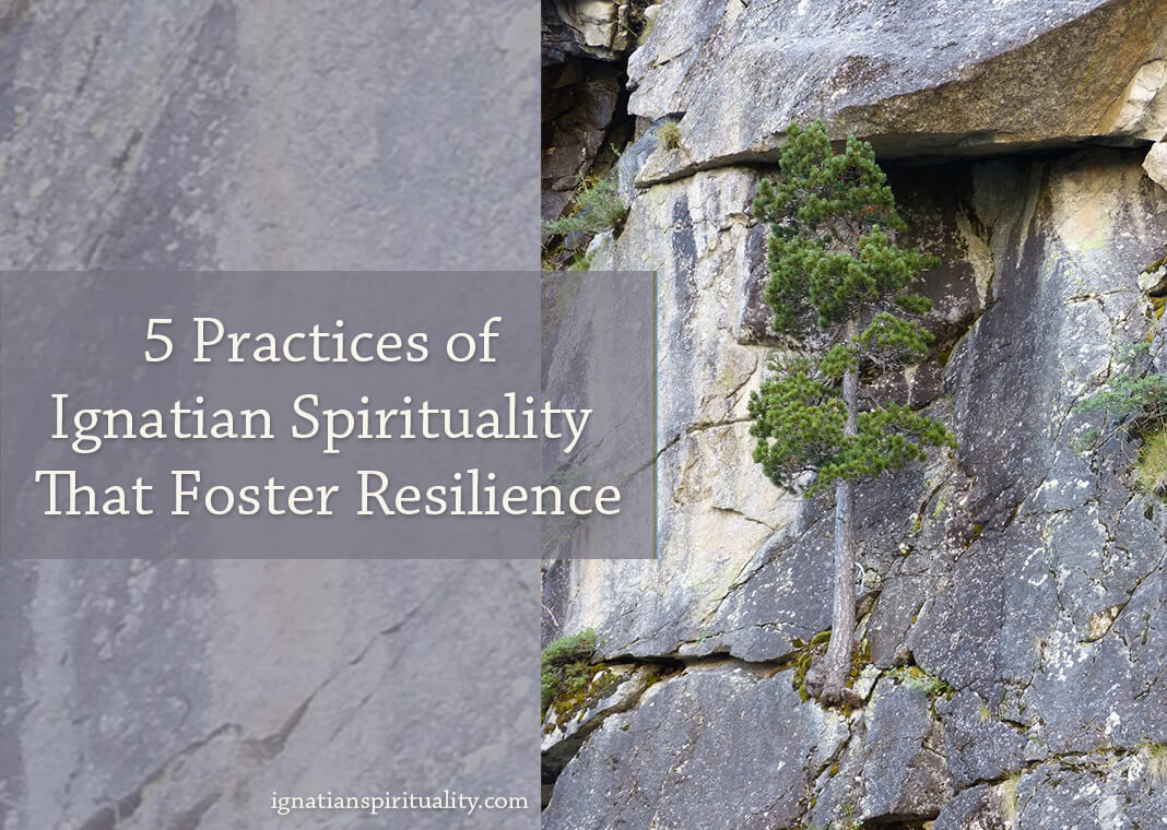 tree growing on side of rock wall - text: Five Practices of Ignatian Spirituality That Foster Resilience
