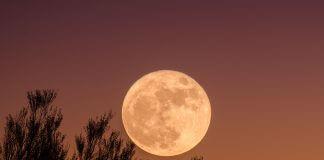 harvest moon - photo by Ganapathy Kumar on Unsplash