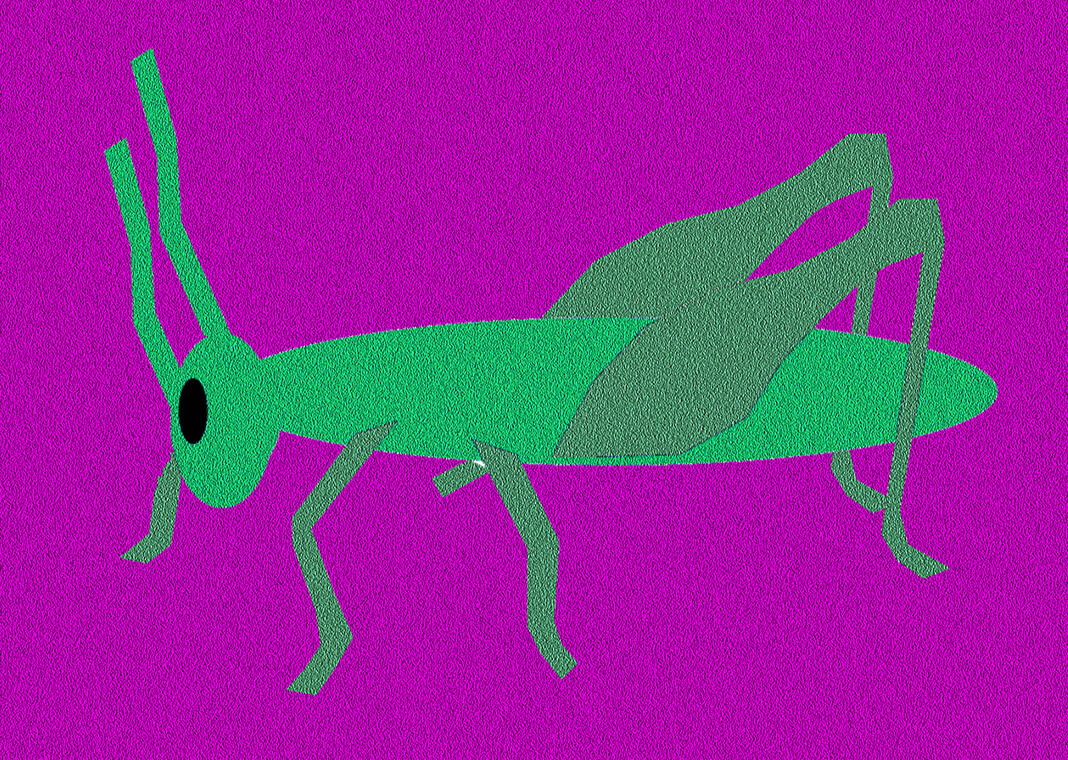 cricket - grasshopper - image by KERBSTONE from Pixabay